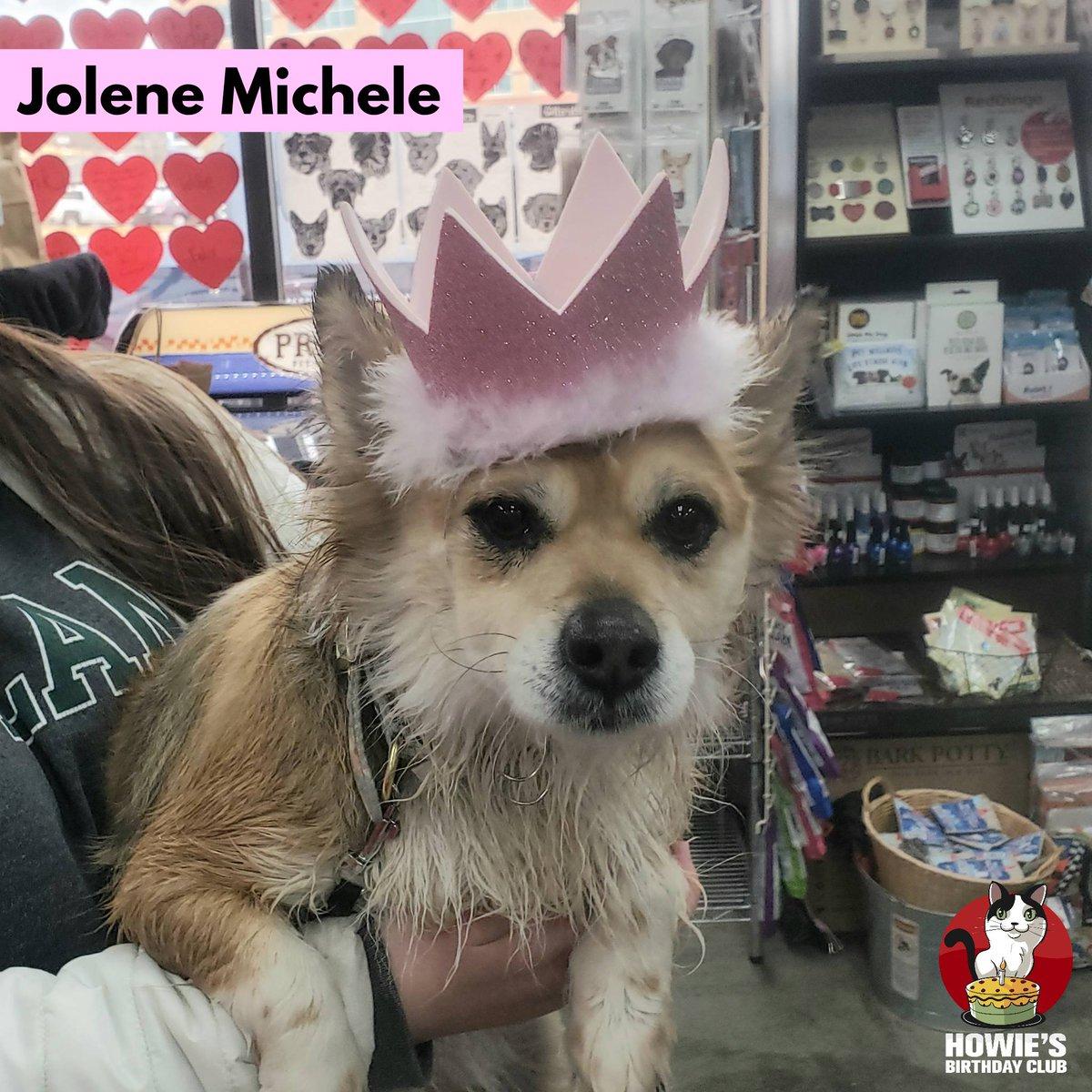 Happy Birthday Jolene Michele! 🎂 #buschpet #jolene #jolenemichele #happybirthday #howiesbirthdayclub #dogsincrowns #queen #birthdaygirl #birthdaydog #partyon #dog #doglife #happyday #dogsofig #dogsofinstagram #instadog #dogstagram #dogsofmissouri #dogsofsemo #capegirardeau