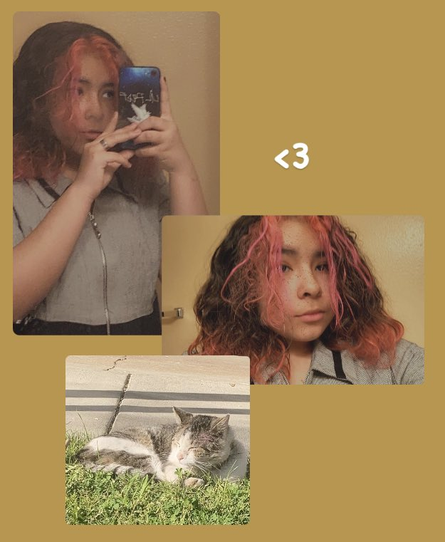 two can play at that game quackity. (rts are ok :]) also, phone case reveal. lil peep signature and the crybaby pigeon. WAS W MY CAT TODAY WOO #quacktwtselfieday