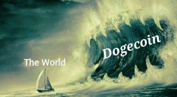 #CalmBeforeTheStorm  #dogecoin  #DogecoinToTheMoon  #DogecoinRise @elonmusk