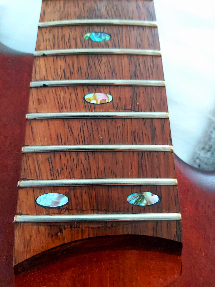 Borderline nerdy, but I love the mother of pearl inlays on the fretboard of my @ibanezofficial SR500 bass ✌☮🎸💜