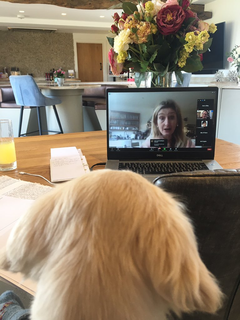 What a lovely morning, sunshine and @SCBWI_BI MG weekend with the totally inspiring and fun @CressidaCowell which my pup Rox loved even more than me. #scbwi #sundayvibes #dogsoftwitter #howtotrainyourdragon #WritingCommunity