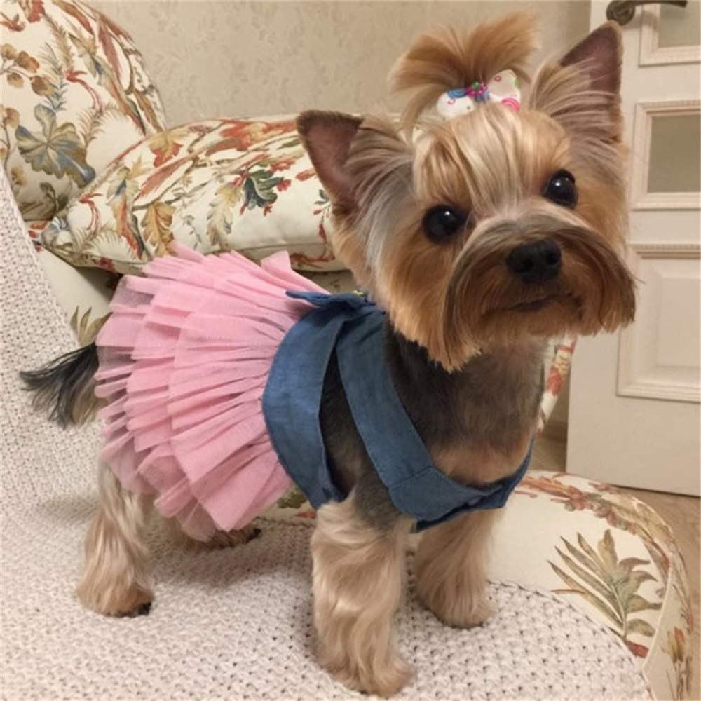 #animal #cute Summer Party Dress For Dogs