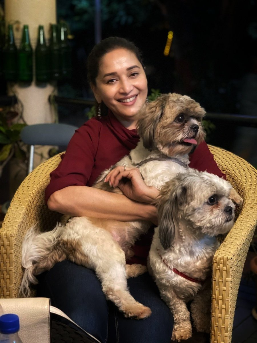 Replying to @MadhuriDixit: Puppy love 🙃🐶
