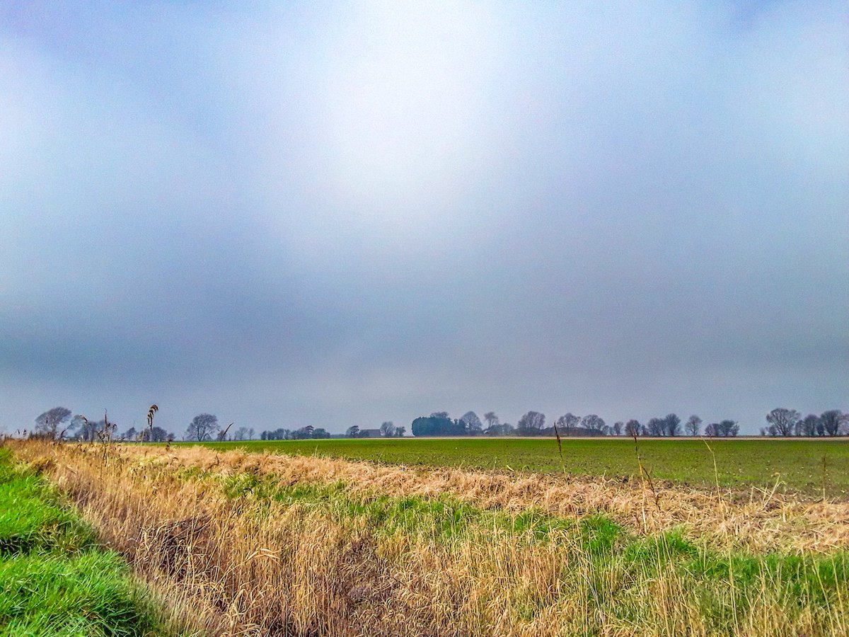 Beautiful afternoon once the #fog cleared in Cambridgeshire @ChrisPage90 @WeatherAisling @itvanglia #ukweather #lastdayofwinter #SundayThoughts #SundayMotivation #thefens