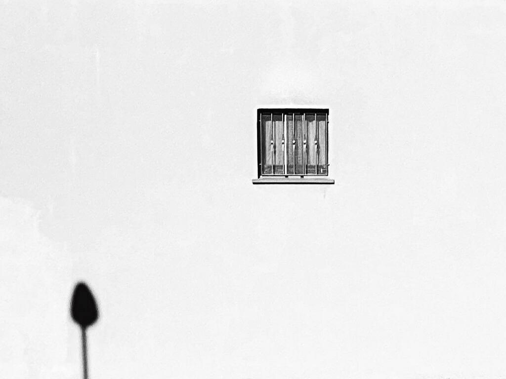 Sbircia Tina... #pointofview #iphonephoto #curvadiviraggio #mobilephotography #outofthephone #shotoniphone #bnw #bnw_captures #blackandwhite #bw #capture #fromstreetswithlove #minimal #black #minimalism #minimalmood #window #lightandshadow #iphonesia #ip…