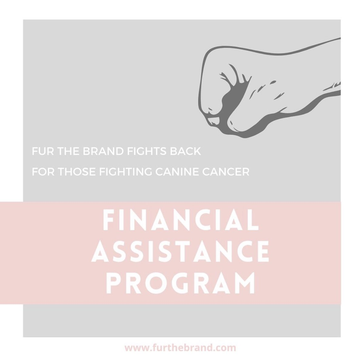 Canine cancer having you sell things around your home or working a second job?! Need help paying those medical bills? We are here to help lift that financial burden! Apply today! Visit our website to learn how we can help your dog or how you can help save dogs with cancer! 🐶