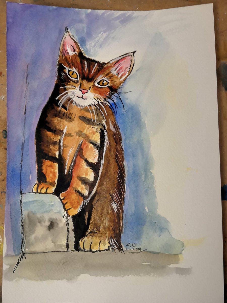 Miaoooooooooo  #painting #watercolour #art #artIsLove #lovedrawing #watercolourpainting #watercolorart #messwithcolours #cat #caturday #lovepainting ❤️ #aquarelle