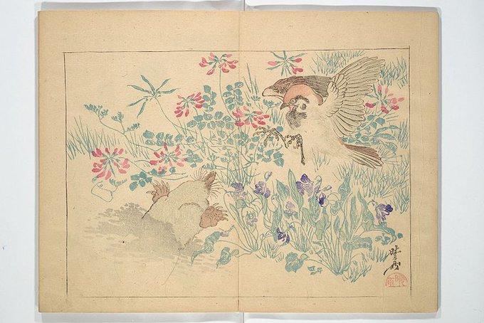 Kyōsai's Drawings for Pleasure, by Kawanabe Kyōsai (1831-1889)  #ukiyoe #japan #art #printing