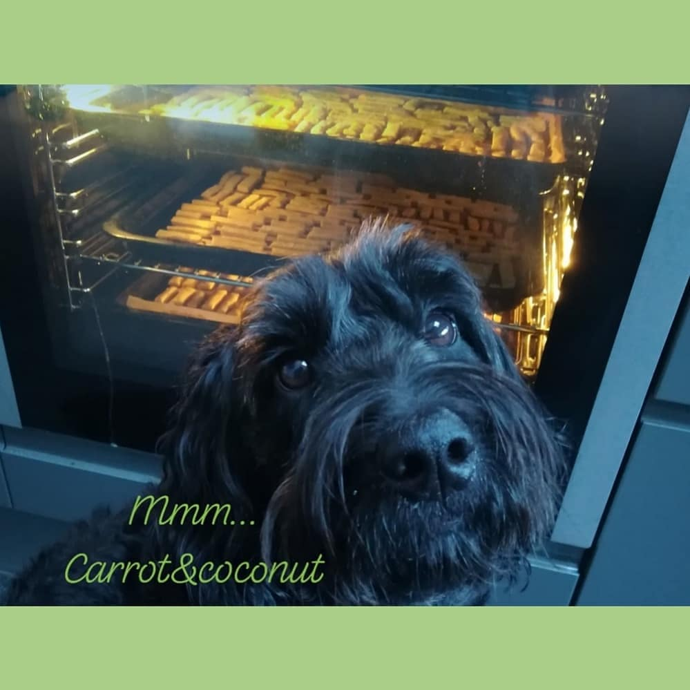 I always try to meet the customers needs - diet, budget, occasion or even packaging. If its not on  just call 07533440396💚🐶💚 #NationalLoveYourPetDay #dogbirthday #dogsoftwitter #SmallBusiness #sundayvibes #smallstreamer #handmade #Budget #diet #Liverpool