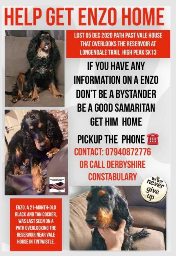 #FindEnzo #LostDog #Stolen ❌OWNER OFFERING SUBSTANTIAL REWARD FOR ANY INFORMATION LEADING TO ENZO SAFE RETURN❌ Enzo, a 21-month-old black and tan Cocker, was last seen on a path overlooking the reservoir near Vale House in Tintwistle. Now presumed stolen.