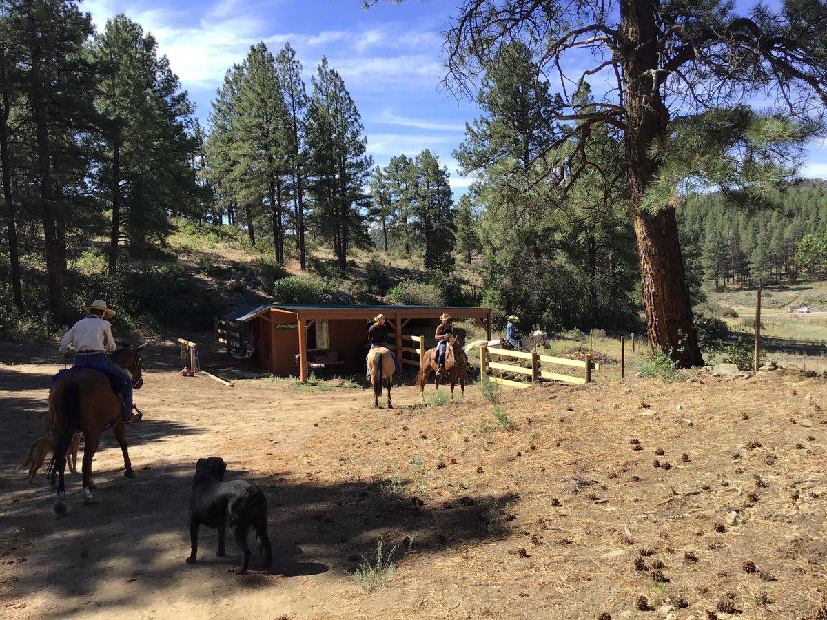 RT  RT  RT @CoachRelocator: Coming Soon ! Premiere Horse Property in #Colorado #real estate Adjacent to National Forest ! #lifestyle #outdoors #…