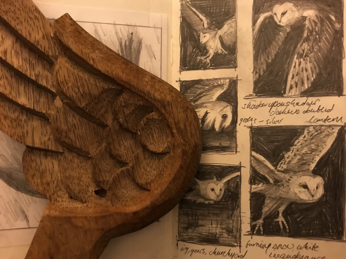 night #night   with Barn Owls #sketchbook