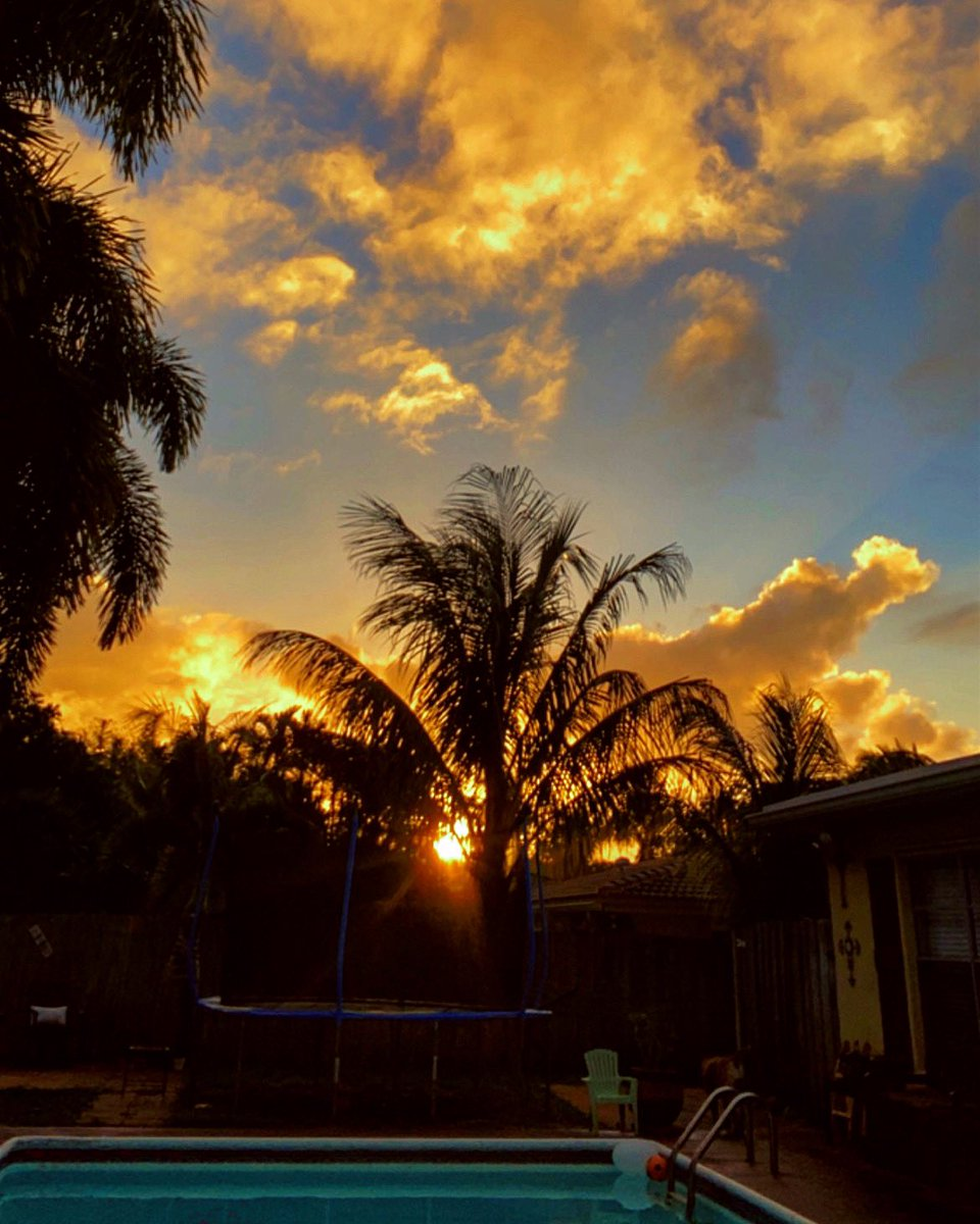 #woah #sunset #tonight in #backyard is #incredible #wowzers #florida #paradise #appreciatelittlethings #admirenature #creationshouts #outside #sky #clouds #palmtrees #pool #night #farewellweekend