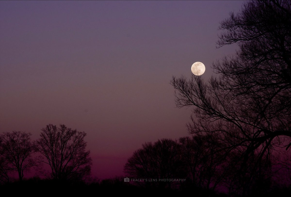 Snow Moon 2021 did not disappoint.  #photo #photographer #SnowMoon