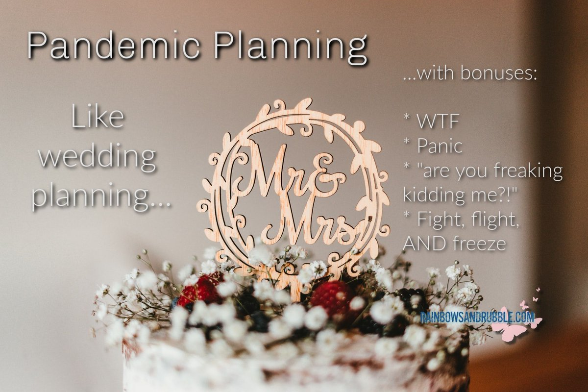 Pandemic planning..... a lot like #weddingplanning except in a #pandemic. 🤣   #wedding