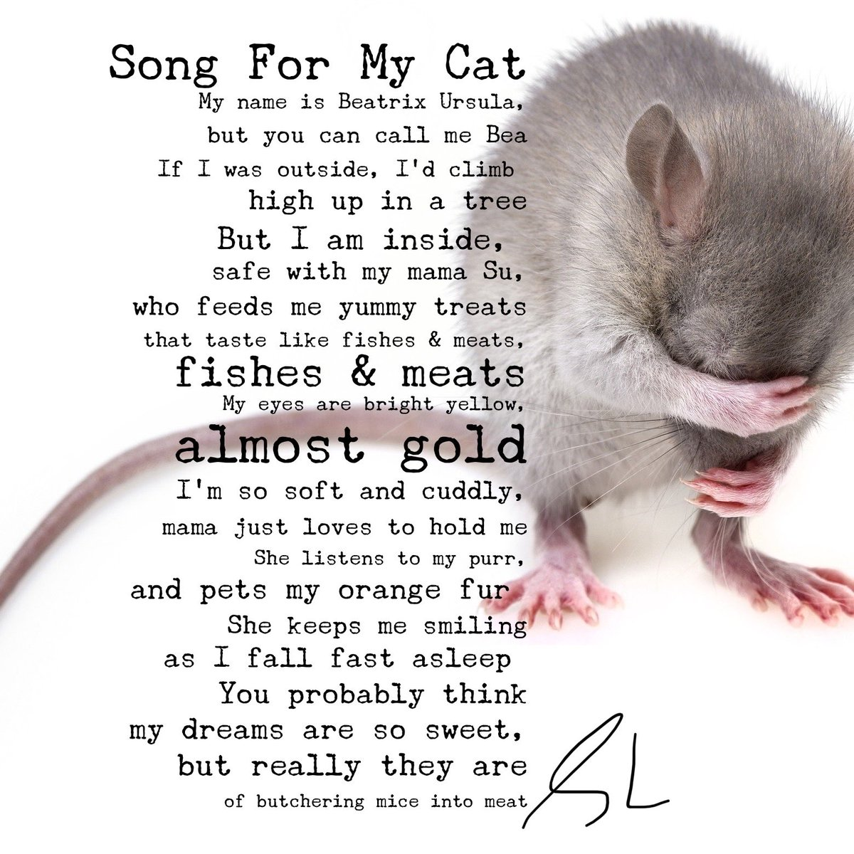 #poetry #writingcommunity #author #poems #song #humour #cats