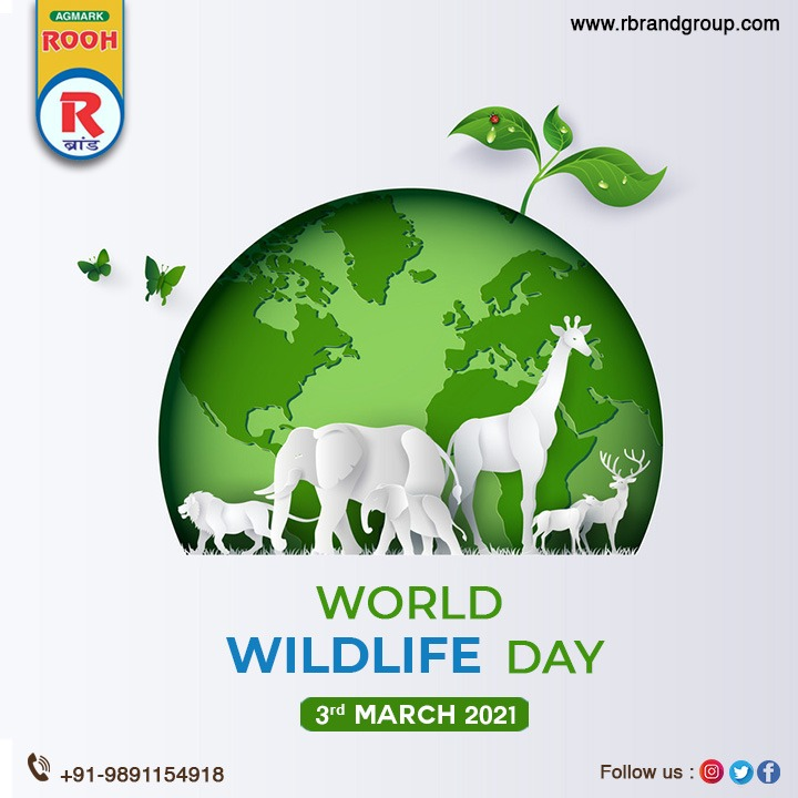 Conserve wildlife for a better world. Rooh R Brand wishes you all a very Happy World Wildlife Day 2021.  #roohrbrand #healthylifestyle #healthyliving #oil #likeforlike #healthoils #likes4likes #love #instagood #foodfreedom #tagblenderr #likesforlikes #mustardoil #WorldWildlifeDay