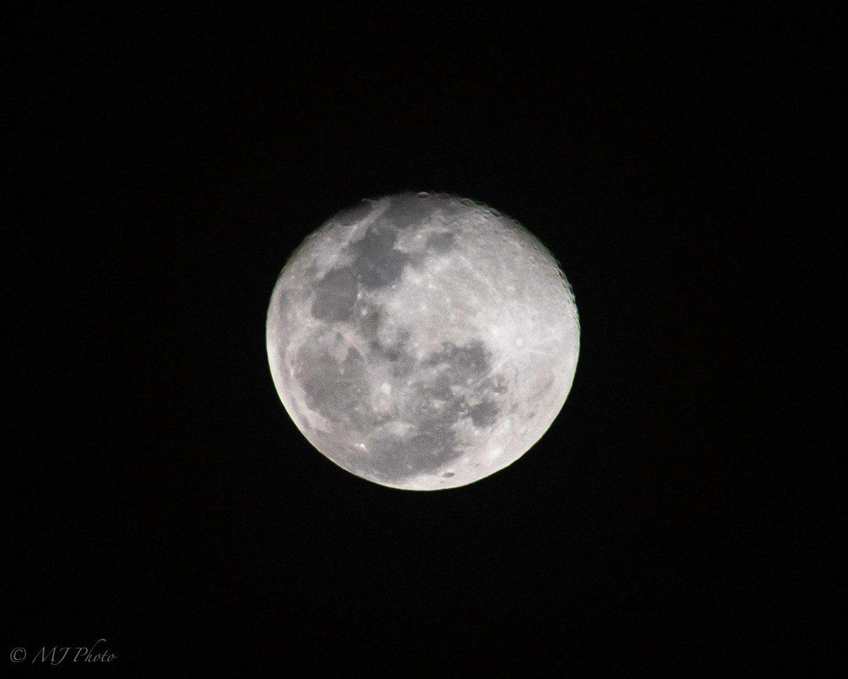 Luna, lunita, lunera🎶  #moon #fullmoon #astrology #astronomy #Pisces #PuertoRico #Boricua #mayaguez #PR