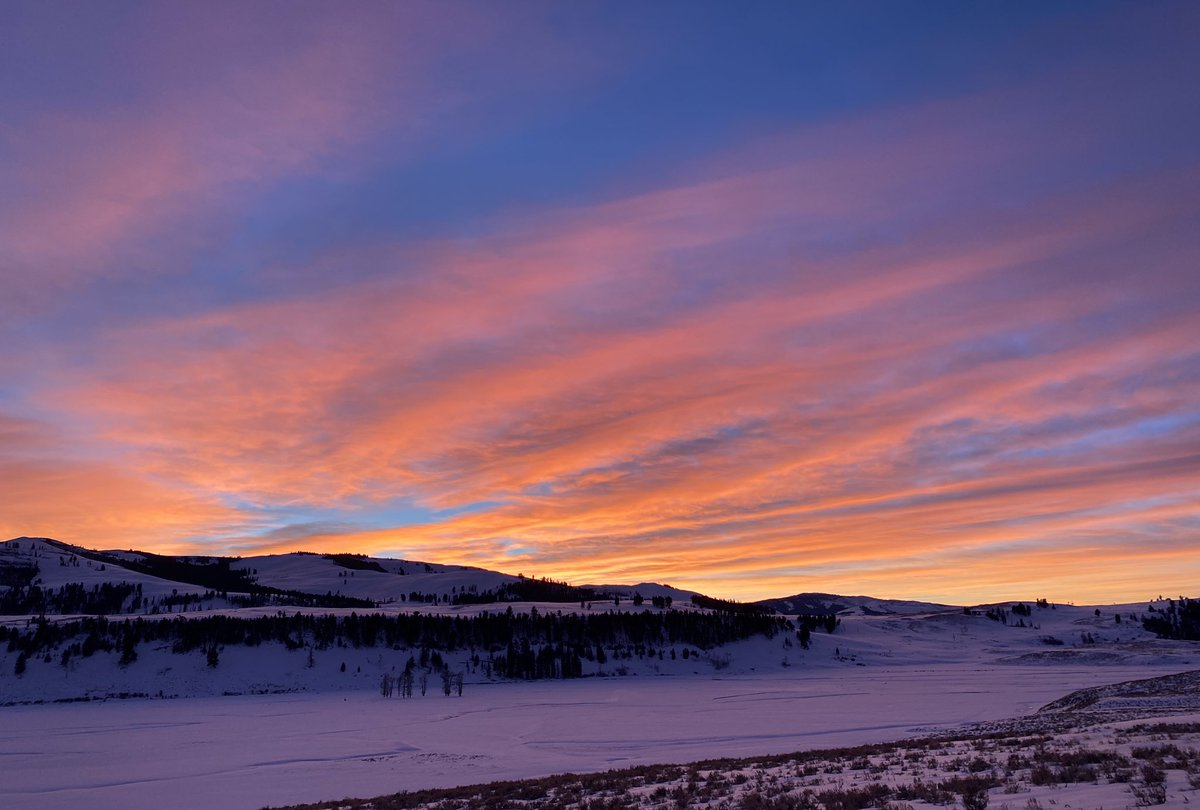 At the end of my day in Yellowstone, God gave me a glorious sunset to enjoy as I drove out of the park. #sunset #yellowstonenationalpark #yellowstone #nature #naturephotography #bluehour #snow #winter