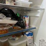 冷蔵庫開けて秒で罵倒…「どけコラ」とはなにごと!
