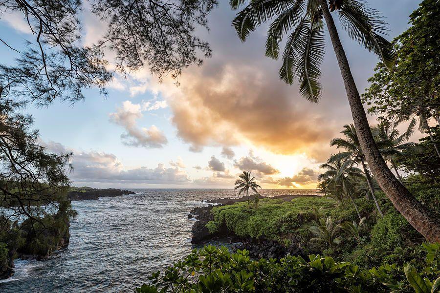 Art for the Walls!   #artlovers #photography #fineart #fineartphotography #art #picoftheday #naturelovers #artwork #AmexLife #landscapelovers #wallart #saatchi #photooftheday #nature #travel #artlover #naturelover #hana #Hawaii
