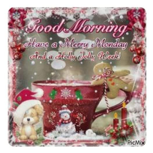 Have a Holly Jolly week! #michigansbestsanta #virtualvisitswithsanta #virtualvisitswithmrsclaus #santaforhire #santaclaus #santatim #santaclausforhire #realbeardedsanta #merrychristmas #mrssanta #mrsclausforhire #merrychristmas  #northpole #Christmas