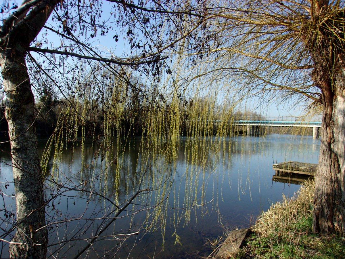 La suite... #Balade #Nature #UnDimancheAlaCampagne  #Moneteau #Yonne #Bourgogne  #weekend #environnement #photooftheday  #photo #picoftheday #PictureOfTheDay  @Magnifique_FR   @Bourgogne_  #MagnifiqueFrance #MagnifiqueBourgogne
