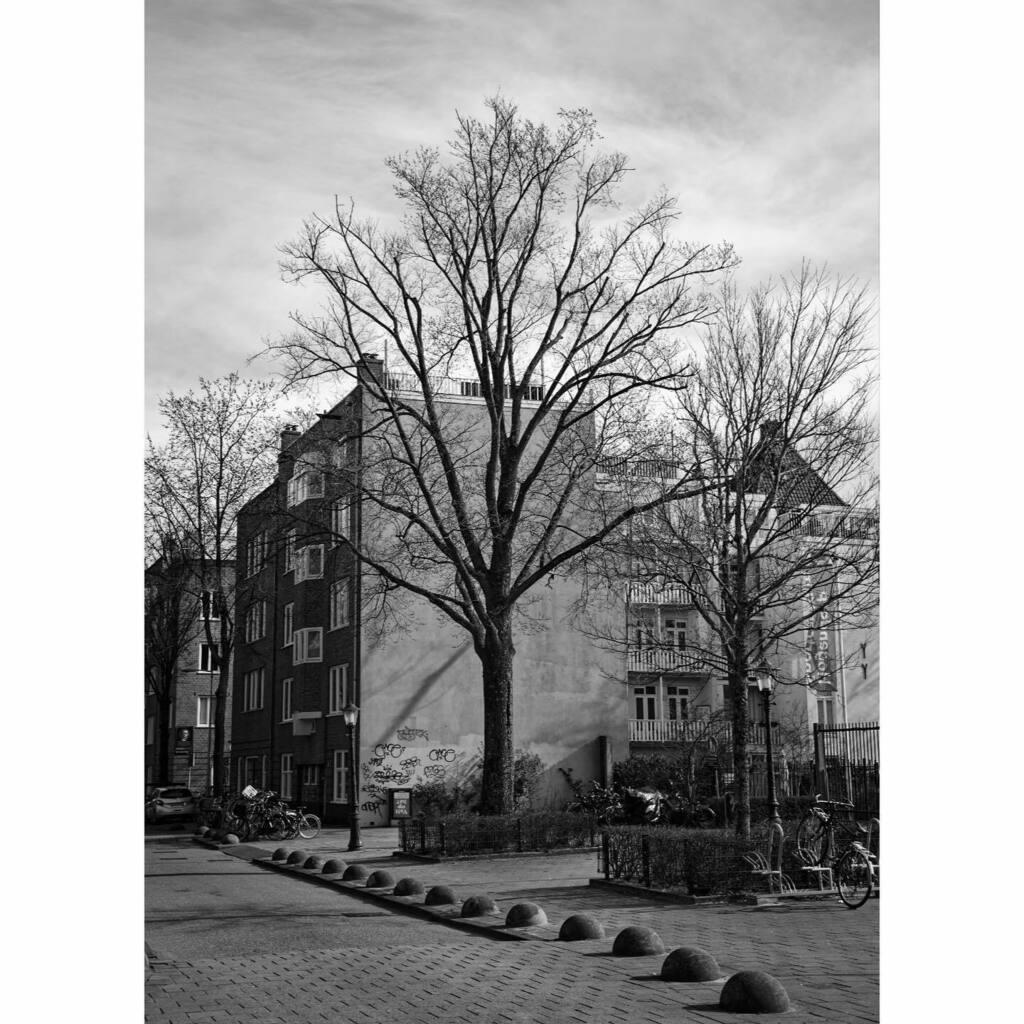 Van Hogendorpstraat Amsterdam #bnw #blackandwhitephotography #canon #r6 #affinity #staatsliedenbuurt #westerpark #neighborhood #shadow #schaduw #picoftheday #pictureoftheday