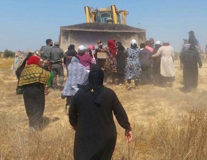 Grandes mujeres palestinas frustraron las excavadoras israelíes durante demoliciones y ataques a la propiedad de los ciudadanos #PalestinaLibre #FreePalestine #dttwtselfieday