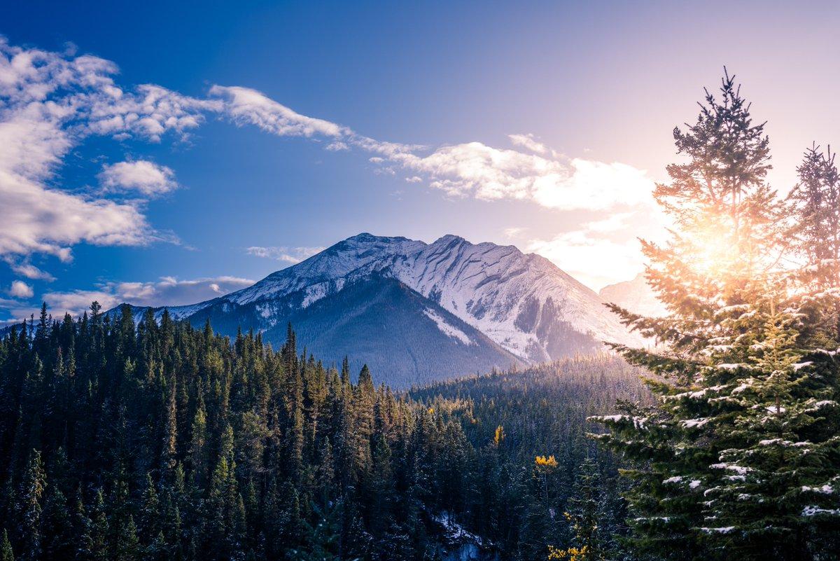 Banff, Canada 🇨🇦  #travel #nature #photography #travelphotography #love #photooftheday #travelgram #picoftheday #photo #beautiful #art #like #naturephotography #follow #wanderlust #adventure #canada #travelblogger #landscape #summer #trip #world_expeditions
