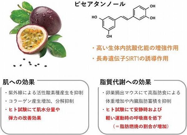 会 農芸 化学