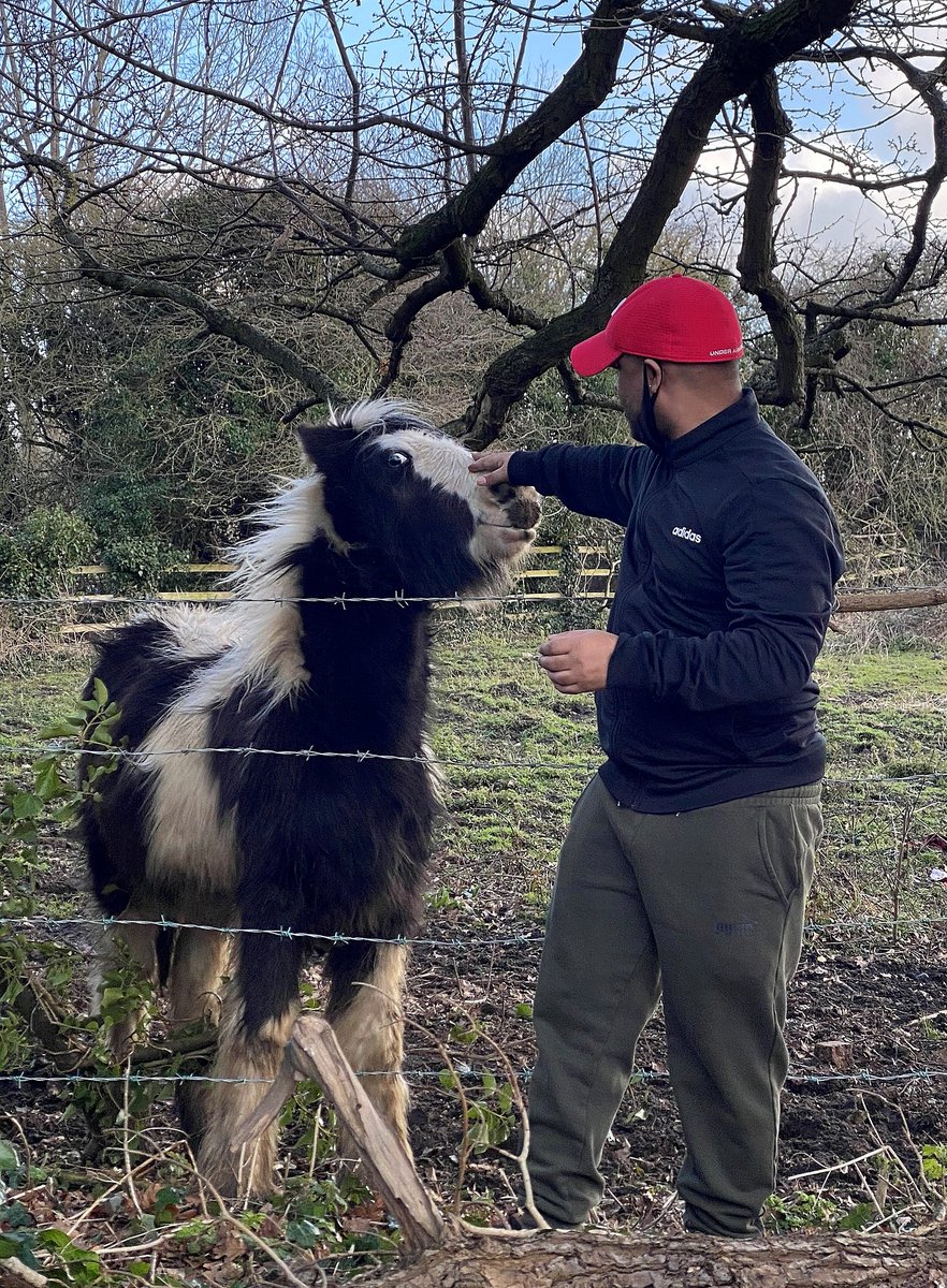 Matty from Thurston House had a nice walk to feed the #local #horses #apples! 🐴🍎 They must've enjoyed the #snack - just look at the #smiles on their faces! 😊  #WeSalutEm #HumanKind #SocialCare #Care #CareHomes #MiltonKeynes #UK #MondayMorning #Exercise #Nature #Countryside