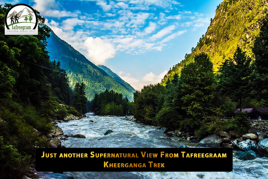 Just another Supernatural View From #Tafreegraam Kheerganga Trek. ❤️ . . . #kalga #pulga #tosh #tafreecafe #tafree #mountains #himachalpradesh #himachalpradeshtourism #homestay #mountainlife #backpack #wanderer #traveller #parvativalley #kheergangatrek