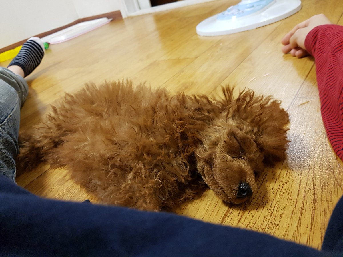D-07  #TBT #Yoongi #Suga #LifeGoesOnWithYoon   2016.09.17