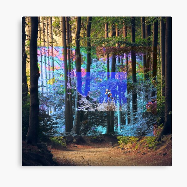 'Forest Aquarium' Canvas Print  This photomanipulation combines three very different nature images into one #surrealism #nature #magritte #surreal #weird #renemagritte #man #dali #cool #colorful