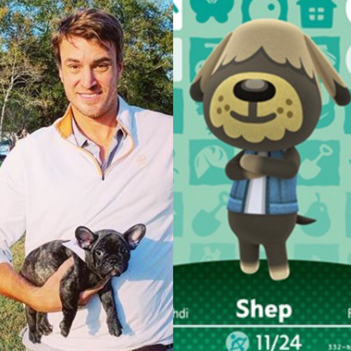 Bravo tv mashup 2: @ShepRose we all now own a little you! Crazy part, he's just like you! True story. 😊❤️ #acnh #Shep #southerncharm #bravotv @andycohn @C_Conover