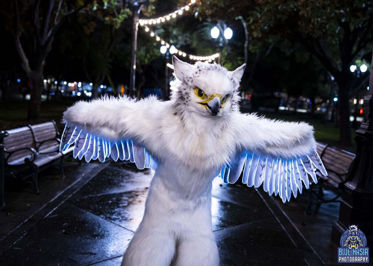 Need some new #FursuitFriday photos?   Photo shoots can be arranged at FC, GSFC, BLFC, AC, PAWCON & ANW.   If you live in CA it is also possible to arrange a photo shoot any time & in many cities from norcal to socal.  Prices start as low as $65  Contact if interested. 26
