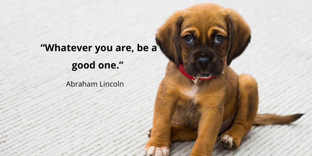 """""""Whatever you are, be a good one."""" -Abraham Lincoln Via Wise Life Lesson    #quotes #inspiration"""