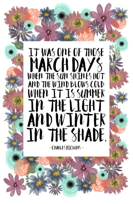 """Happy #March1st   """"It was one of those #March #Days when the sun shines hot & the #Wind blows #cold: When it is #summer in the #light & winter in the shade."""" -Charles Dickens   Photo cred -@Thyme_is_Honey   #March2021 #March1 #spring #SpringIsComing #quote #quotes #quoteoftheday"""