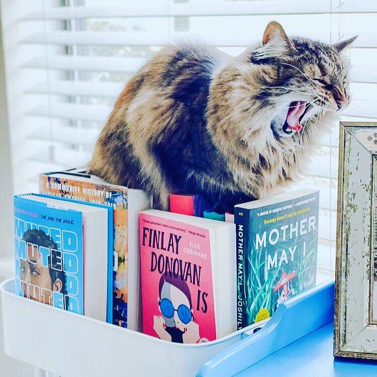 #books #BookBoost #BookTwitter