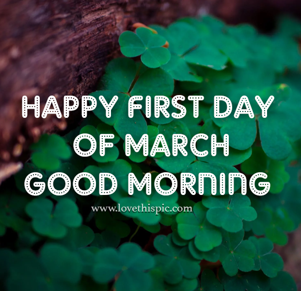 Let's do everything we can to keep everyone safe so that this March is the opposite of last March. Wishing you a peaceful, creative, and healthy new month. With #books, of course. 😀 #rabbitrabbit