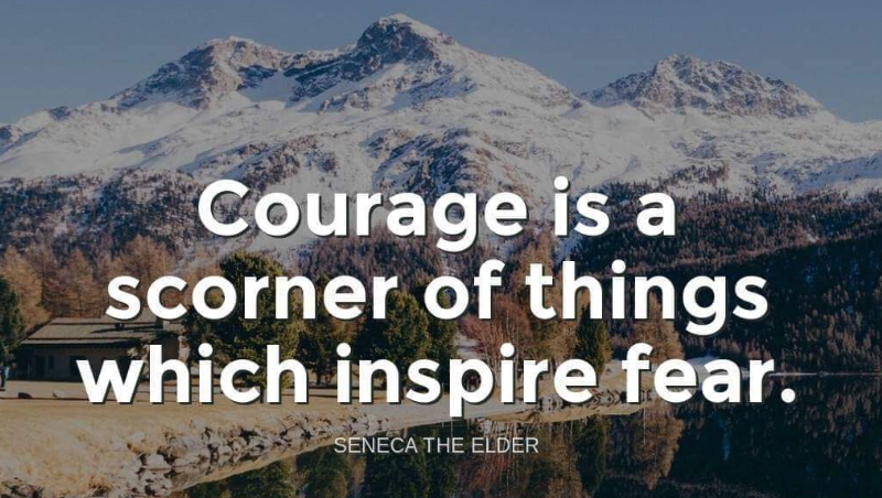 Be courageous. Scorn fear. #TuesdayFeeling #tuesdaymotivations  #courage #nofear