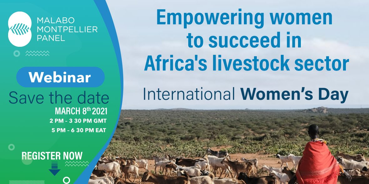 test Twitter Media - #SaveTheDate - 8 March #IWRD2021  @MaMoPanel's first webinar of the year 2021 will be dedicated to #Women in #Africa's #Livestock sector.   Learn more and register here: https://t.co/zHqpaN3vTs https://t.co/nG8Czm03wP