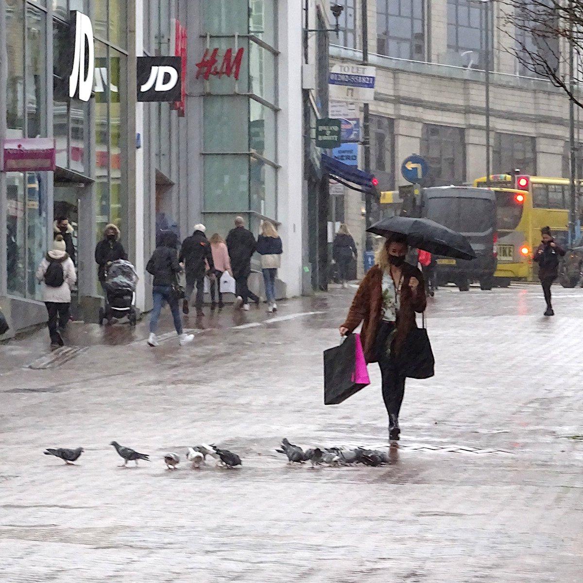 Umbrella & Pigeons #streetphotography #photography #photos #photographer #photooftheday #photographers #streetsnap #ThePhotoHour #PhotographyIsLife #colorphotography #street #streets #StreetStyle #StreetStyleDaily #streetscene #umbrella #rain #umbrellas