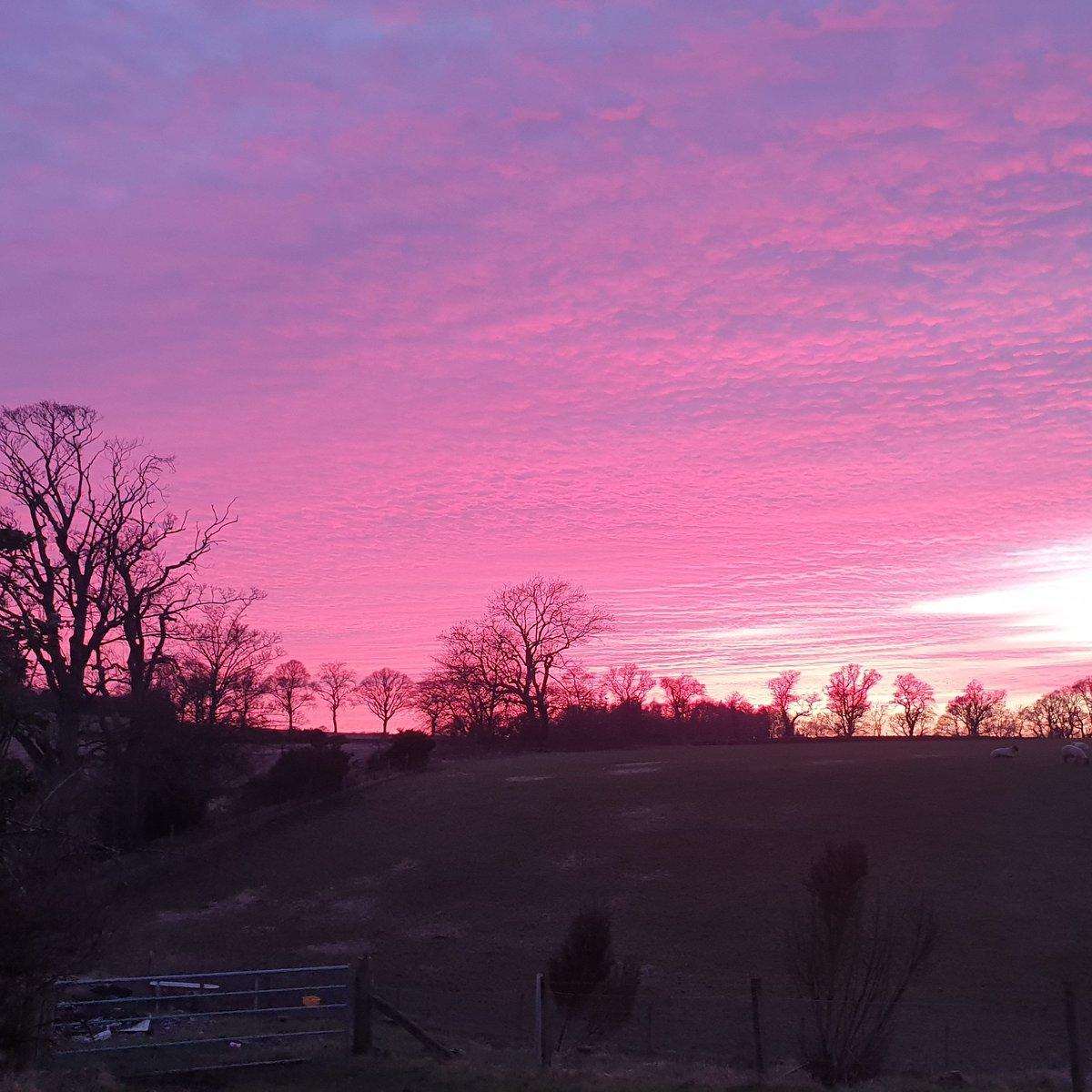 Do love a beautiful sunset   #nofilter #arnbegfarmstayscotland
