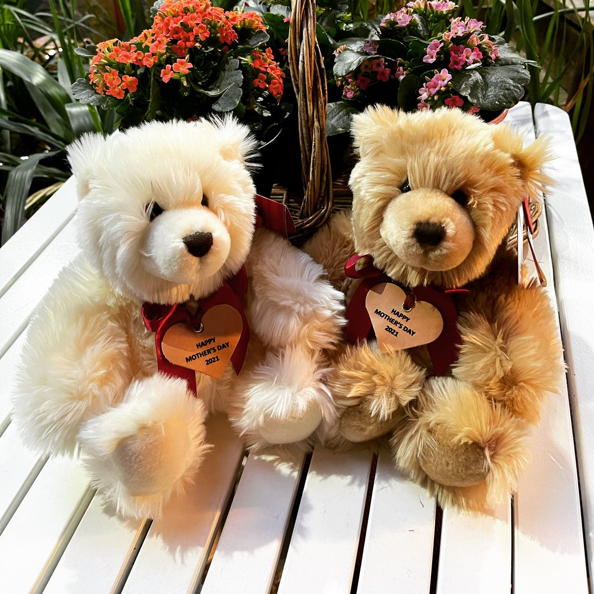 """Happy Mother's Day"" Teddy Bears for mum to enjoy. A great way to receive a hug this year. 🤗 #mothersday #mothersdayteddy #happymothersday #mothersdaygift #wednesdaywisdom #bearessentialsireland #teddybear #specialgifts #personalisedgifts"