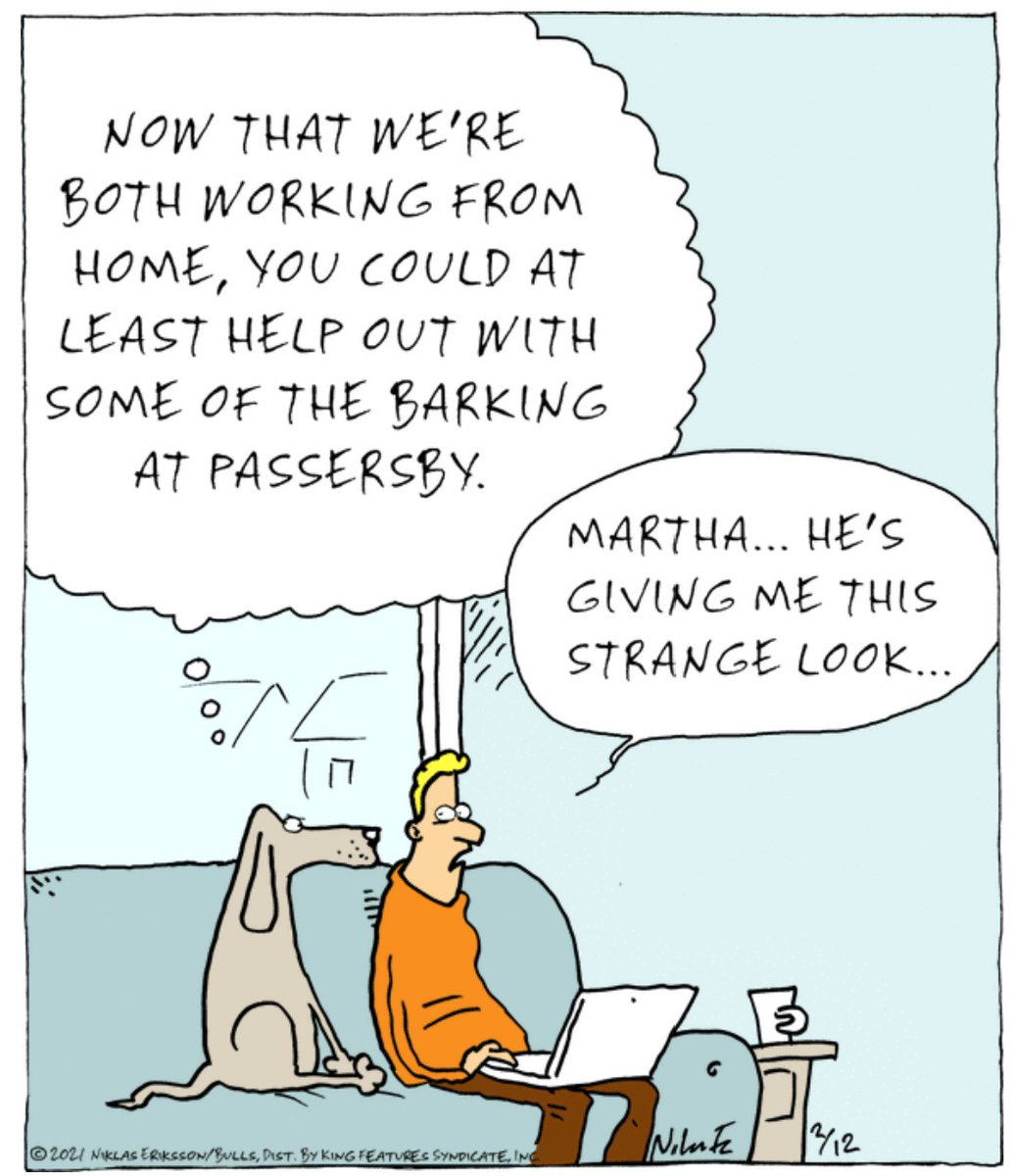 . #Dog Wants Help from his #WorkingFromHome Human  #lol #comedy #jokes #humor #hilarious #laughter #funny #fun #smile #laughing #lmao #haha #dogs #doggy #dogsoftwitter #mydog #dogslife #doglover #puppy #dogsarelove #lovemydog #dogslife #dogsarefamily #pets #animallovers #animals