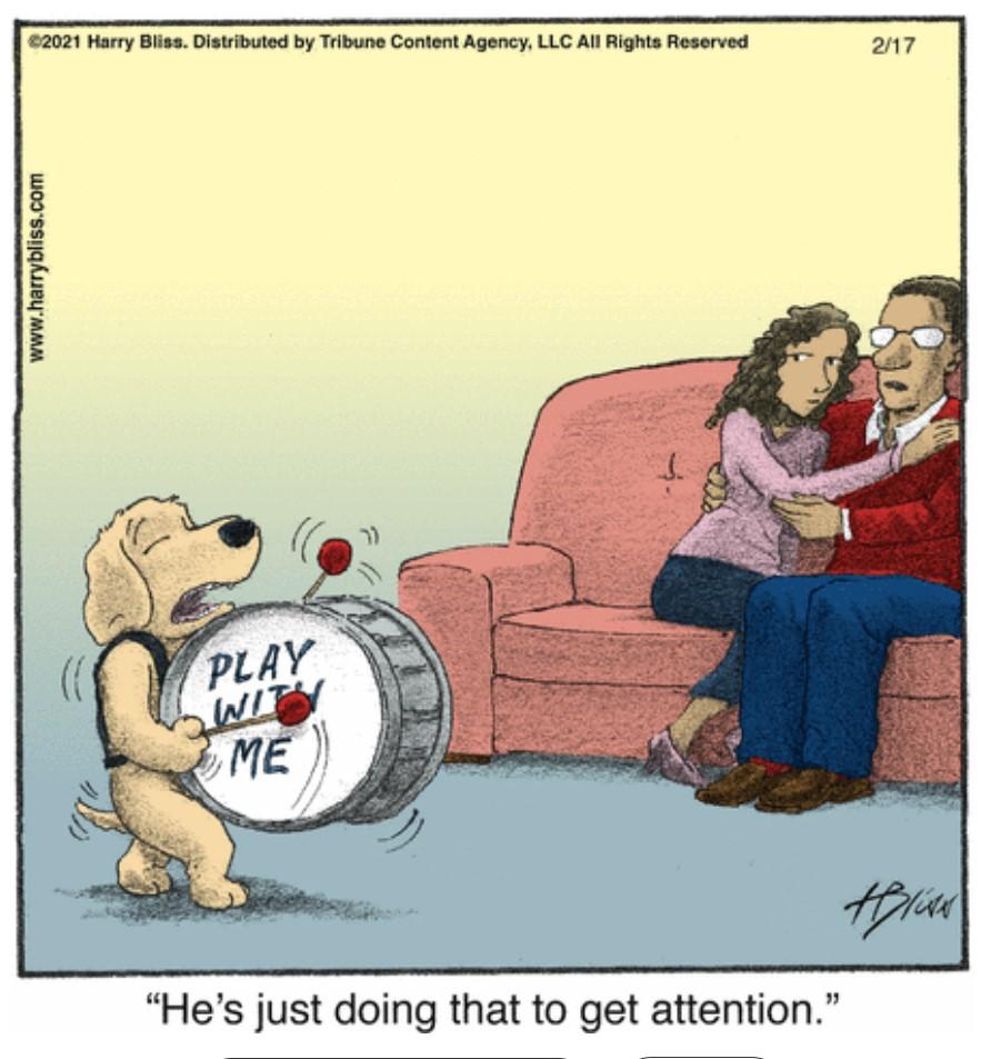 . #Dog Wants More #Playtime   #comics #cartoon #lol #jokes #humor #hilarious #laughter #funny #fun #smile #laughing #lmao #haha #dogs #doggy #dogsoftwitter #mydog #dogslife #doglover #puppy #dogsarelove #lovemydog #dogslife #dogsarefamily #pets #animallovers #animals #naturelover