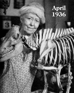Born in Indiana in 1861, Carrie Barbour was one of the world's first female paleontologists. In 1895 she became an Assistant Curator at UNSM. She never retired. At the time of her death in 1942, she'd worked 49 years in the museum. #BecauseOfHerStory #WomensHistoryMonth