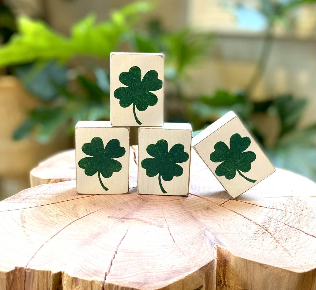 I'm in 💚 with the richness of this green 🍀! #StPatricksDay #stpattysday #green #shamrock #lucky #luckycharm #stpatricksdaydecor #woodworking #woodsign #rusticdecor #interiordesign #interiordecor #handmade #MothersDay #cabindecor #countrydecor #etsy #ct #supportsmall #etsyshop